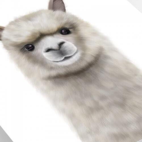 Alpaca art print close up